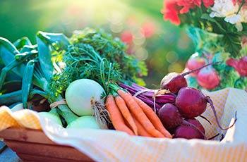Доставка фруктов и овощей из Европы и Азии